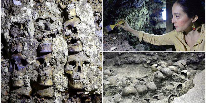 মানুষের শত শত মাথার খুলি দিয়ে তৈরি টাওয়ারের সন্ধান